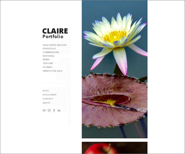 A portfolio book online is great with the right kind of design